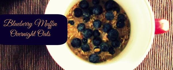 Blueberry muffin overnight oats mug